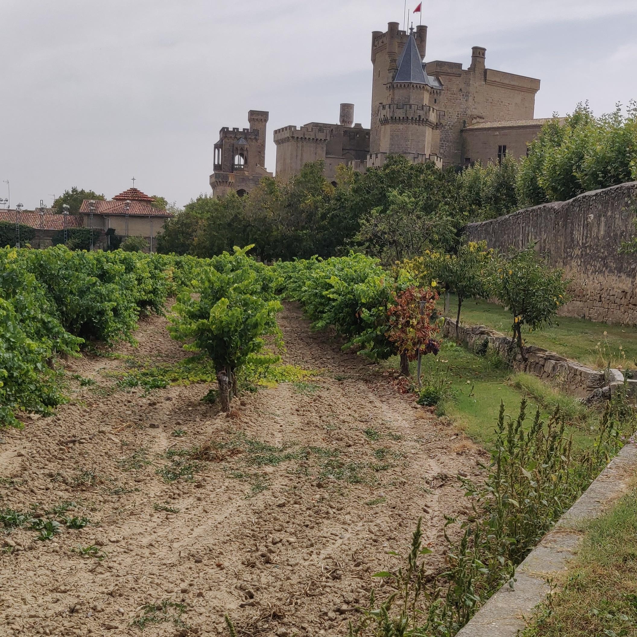 Tuin achter kathedraal van Olite
