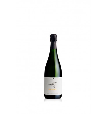 https://www.oinosshop.be/1017-thickbox_default/alta-alella-bruant-organic-brut-nature-cava-2016-vin-nature.jpg
