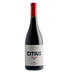 Alta Pavina - Citius 2016