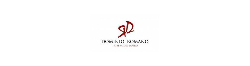 Dominio Romano - Ribera del Duero